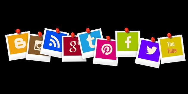 WEB MARKETING (Action Plateforme Opcalia)