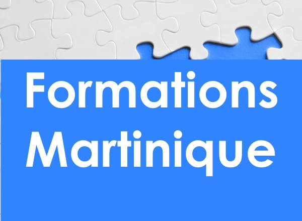 Les formations INTER en Martinique